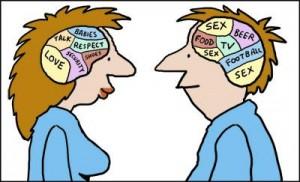 Kvinnelig hjerne